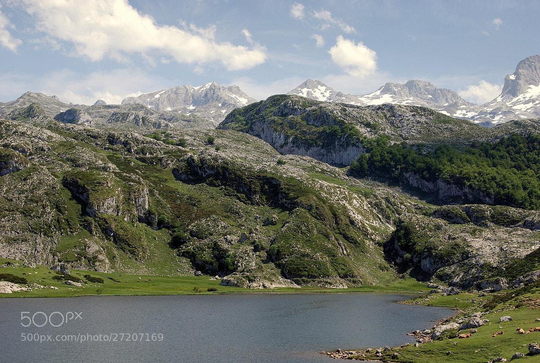 Photograph Picos de Europa by Jose Maria Vidal Sanz on 500px