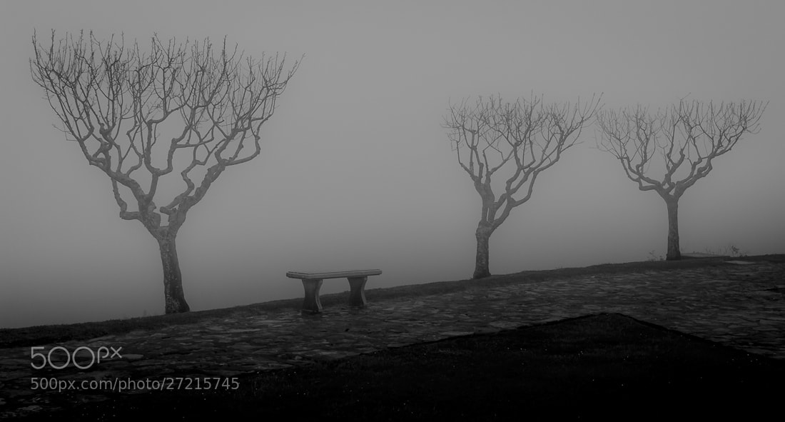 Photograph Absence by P A on 500px