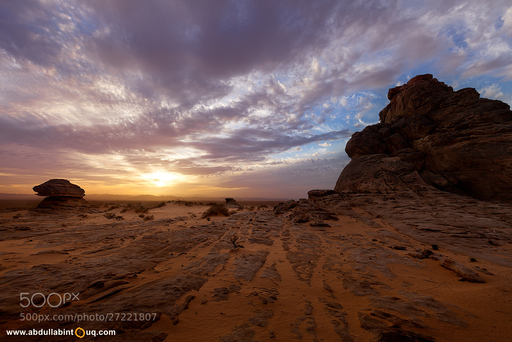 Photograph Land of Opportunity by Abdulla Bin Touq on 500px