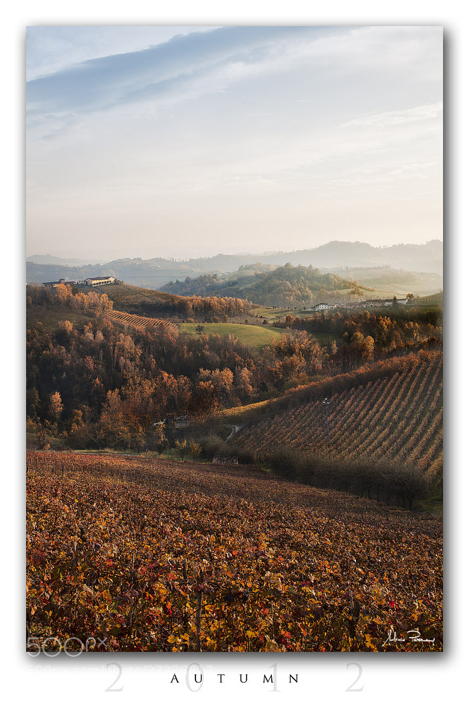 Photograph Autumn by Antonio Perrone on 500px