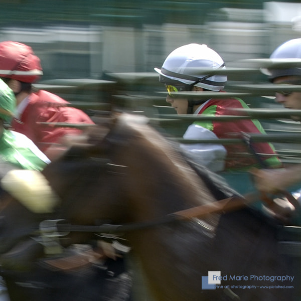 Photograph A Horse Race Afternoon #2 by Fred Marie on 500px
