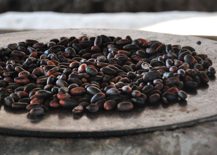 Roasted Cacao Beans by Jo Oltman on 500px.com