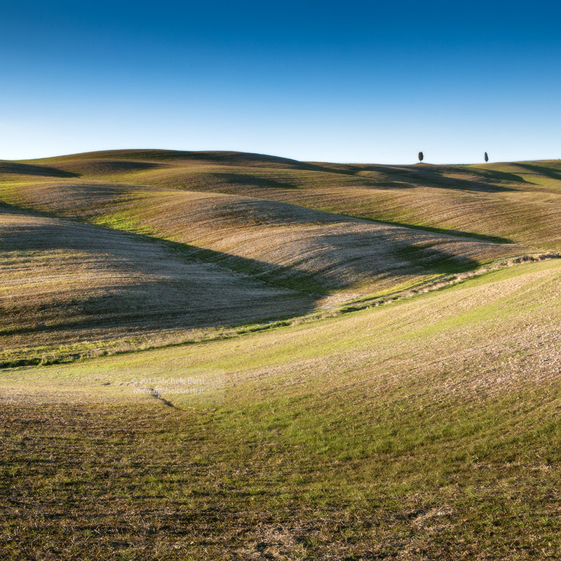 Photograph Trees on rolling hills (Mar 20113) by michele berti on 500px