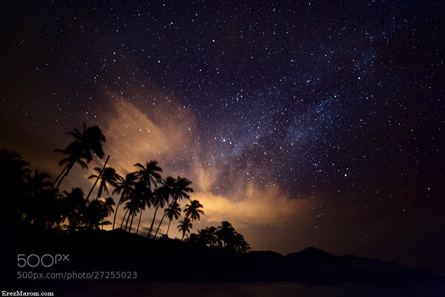 Photograph Palms of the Milky Way by Erez Marom on 500px