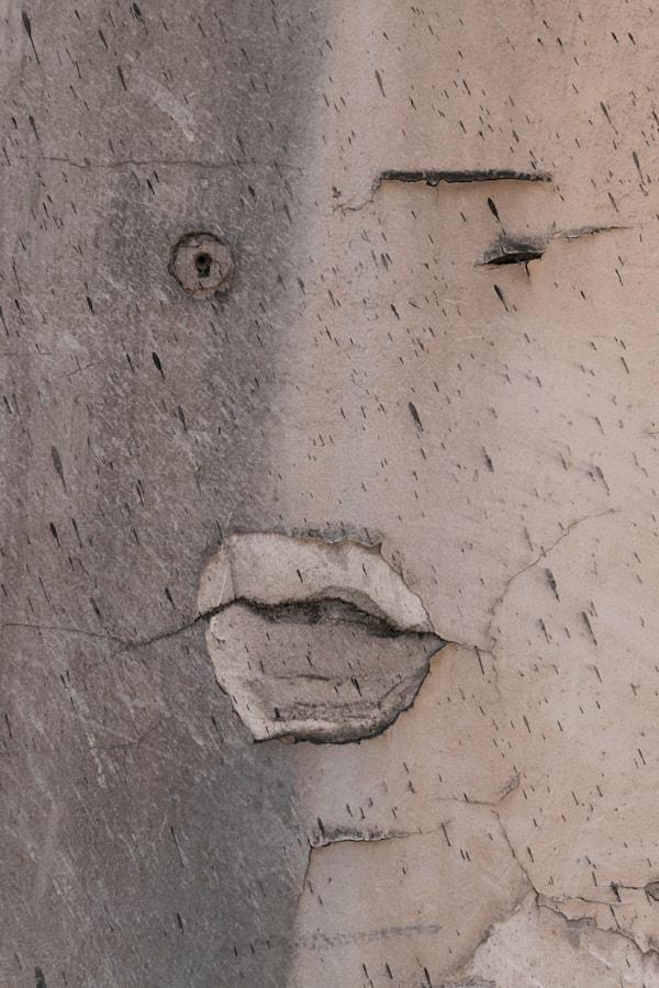 Clin d'oeil (Blink) de Christine Druesne sur 500px.com