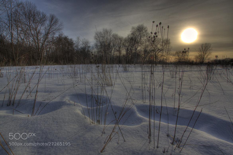 Photograph Park Sunset by Noah Saydel on 500px