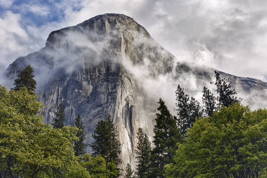 Photograph Stormy El Capitan by Ian Frazier on 500px