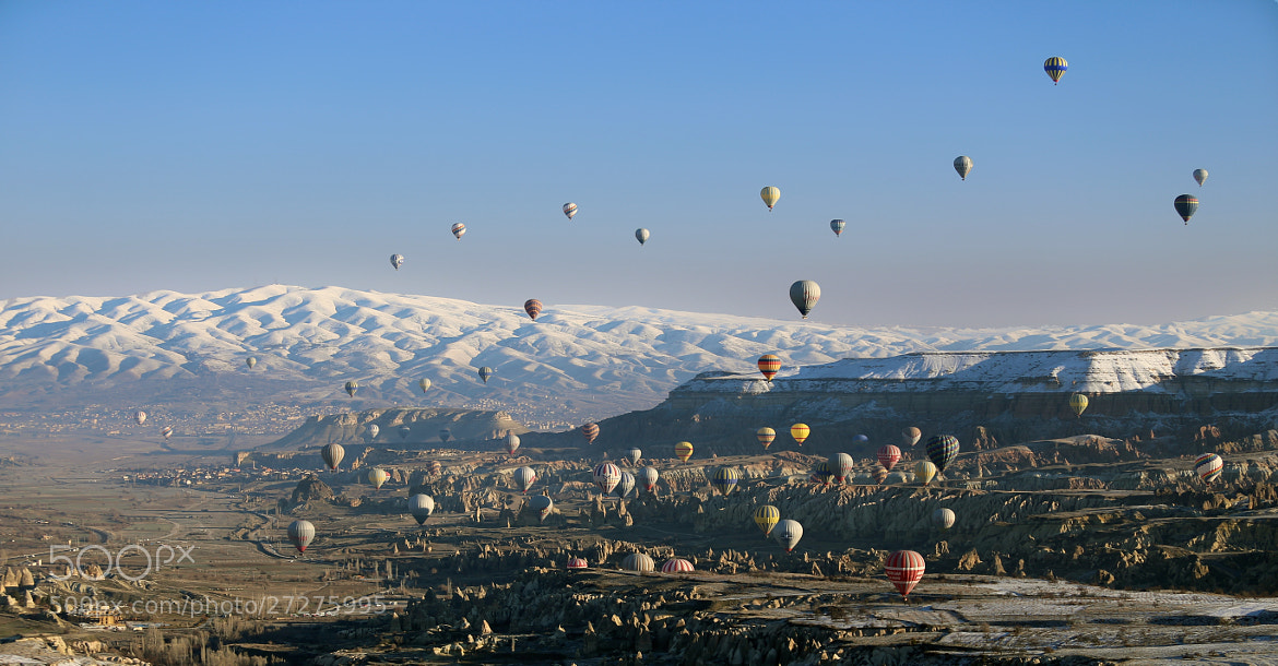 Photograph Balloons #4 by Miles Skorpen on 500px