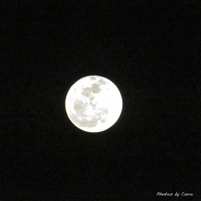 Photograph Moon shot by Carra Riley on 500px