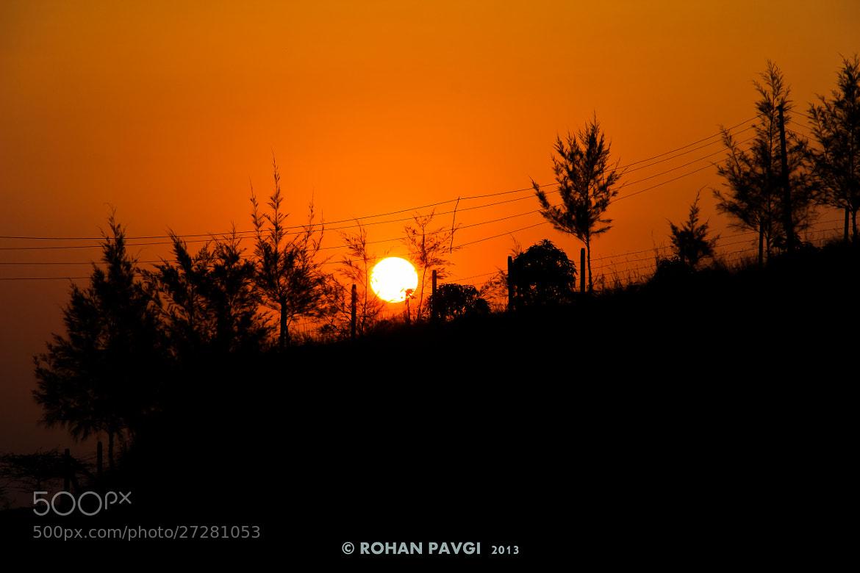 Photograph Morning Sun! by Rohan Pavgi on 500px