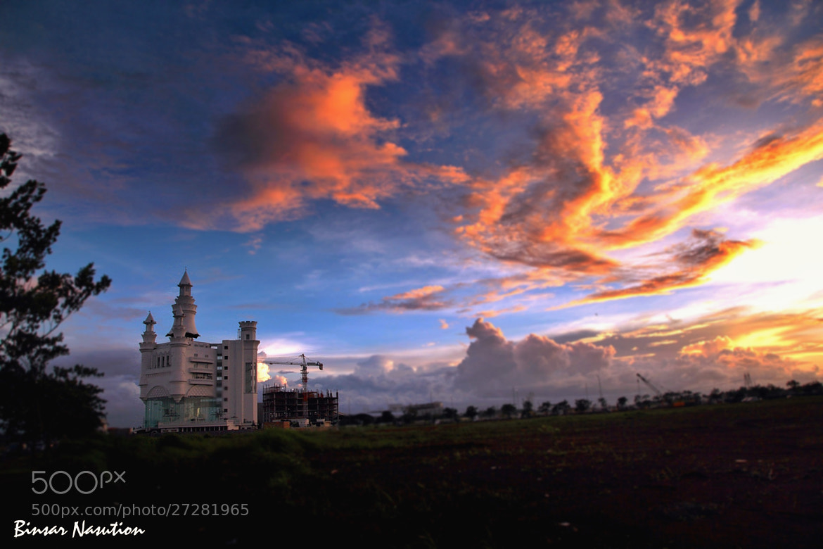 Photograph White Castle by Binsar Nasution on 500px