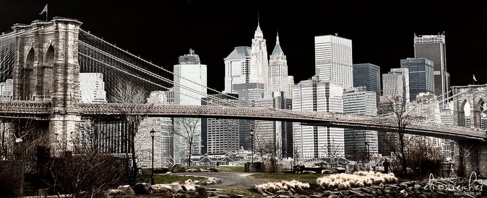 Photograph Hello New York by Eli Ostreicher on 500px