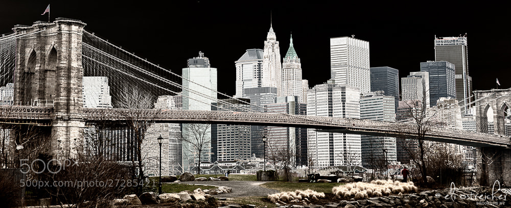 Photograph Hello New York by Eli Ostreicher on 500px