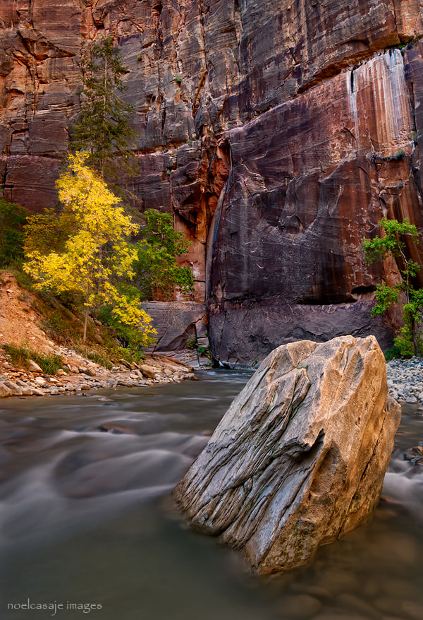 """Photograph """"KEEPER OF THE SPRINGS"""" The Narrows - Zion NP by noel casaje on 500px"""