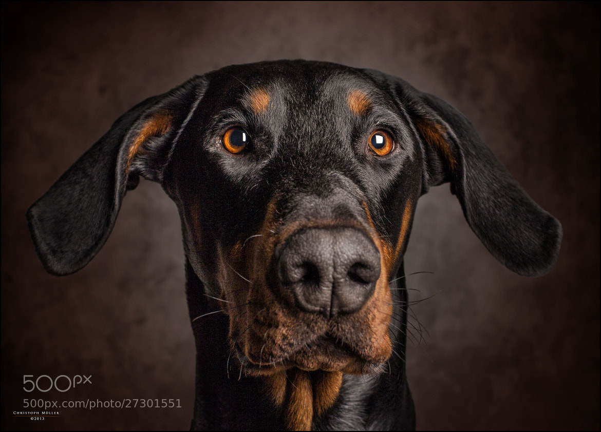 Photograph Diego by Christoph Müller on 500px