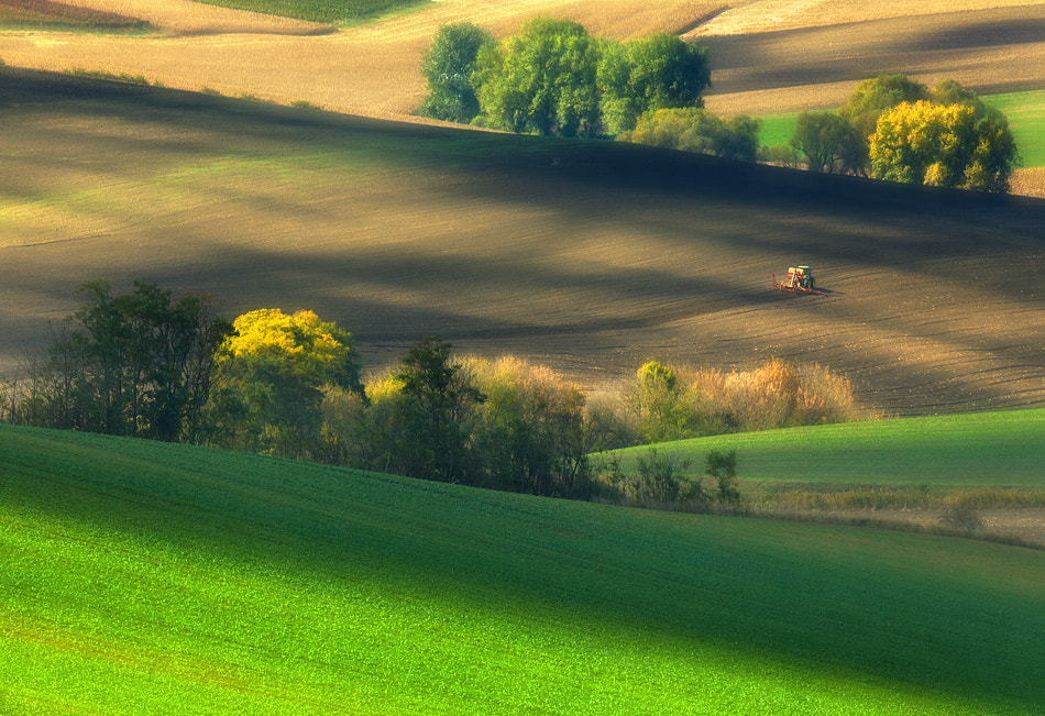 Photograph Fields.... by Krzysztof Browko on 500px