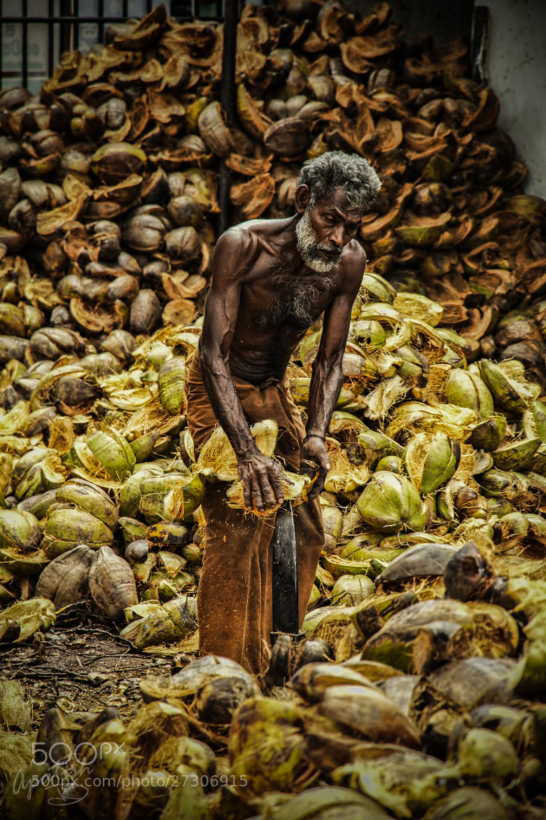 Photograph coco-NUT's job by Ariel Patish on 500px