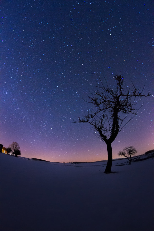 Photograph Starlit by Wolfgang Voigt on 500px