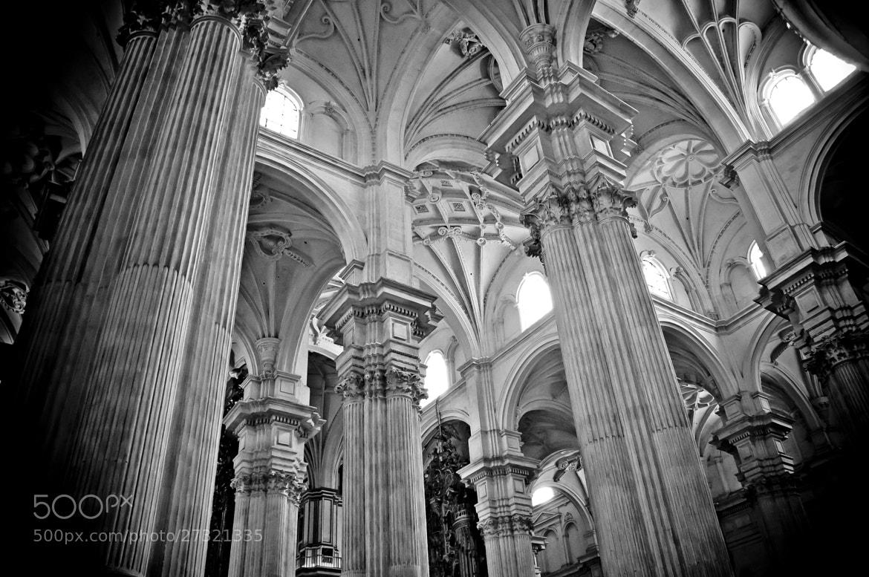 Photograph Catedral de Granada by Luis Sánchez Olmedo on 500px