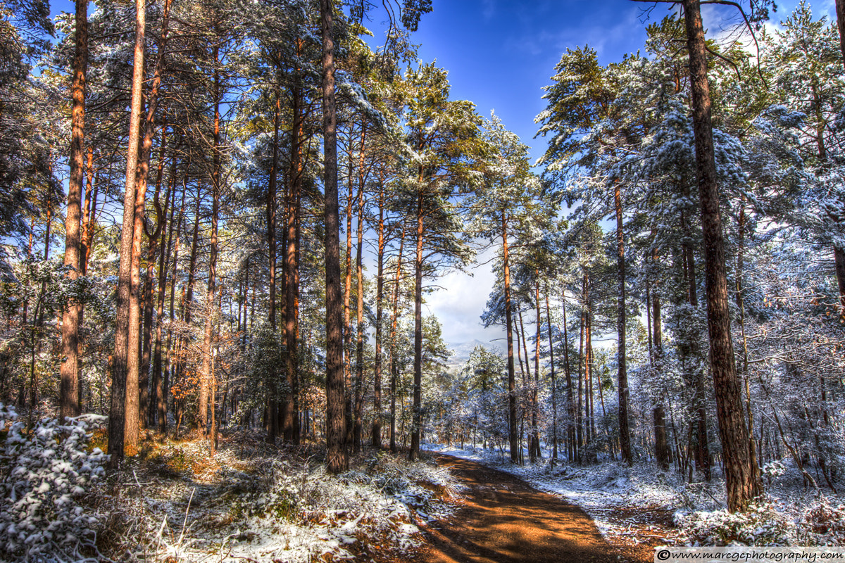 Photograph Path Throw The Snow by Marc Garrido on 500px