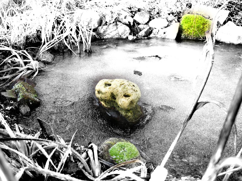 Photograph unser gartenteich im winter by j rgen brandt on for Gartenteich im winter