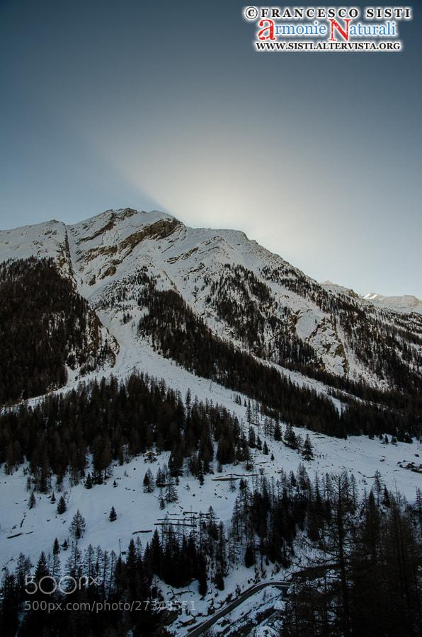 Photograph Un soffio di luce... (Valsavarenche, Parco Nazionale Gran Paradiso, Valle d'Aosta) by Francesco Sisti on 500px