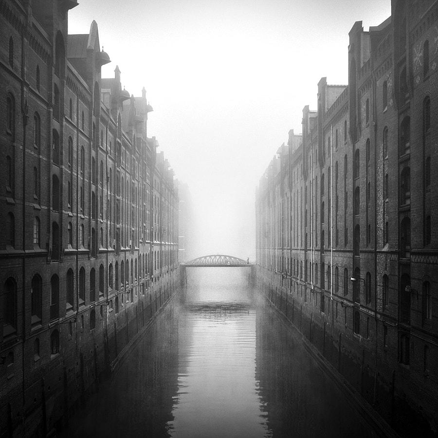 november fog, автор — Kai Ziehl на 500px.com