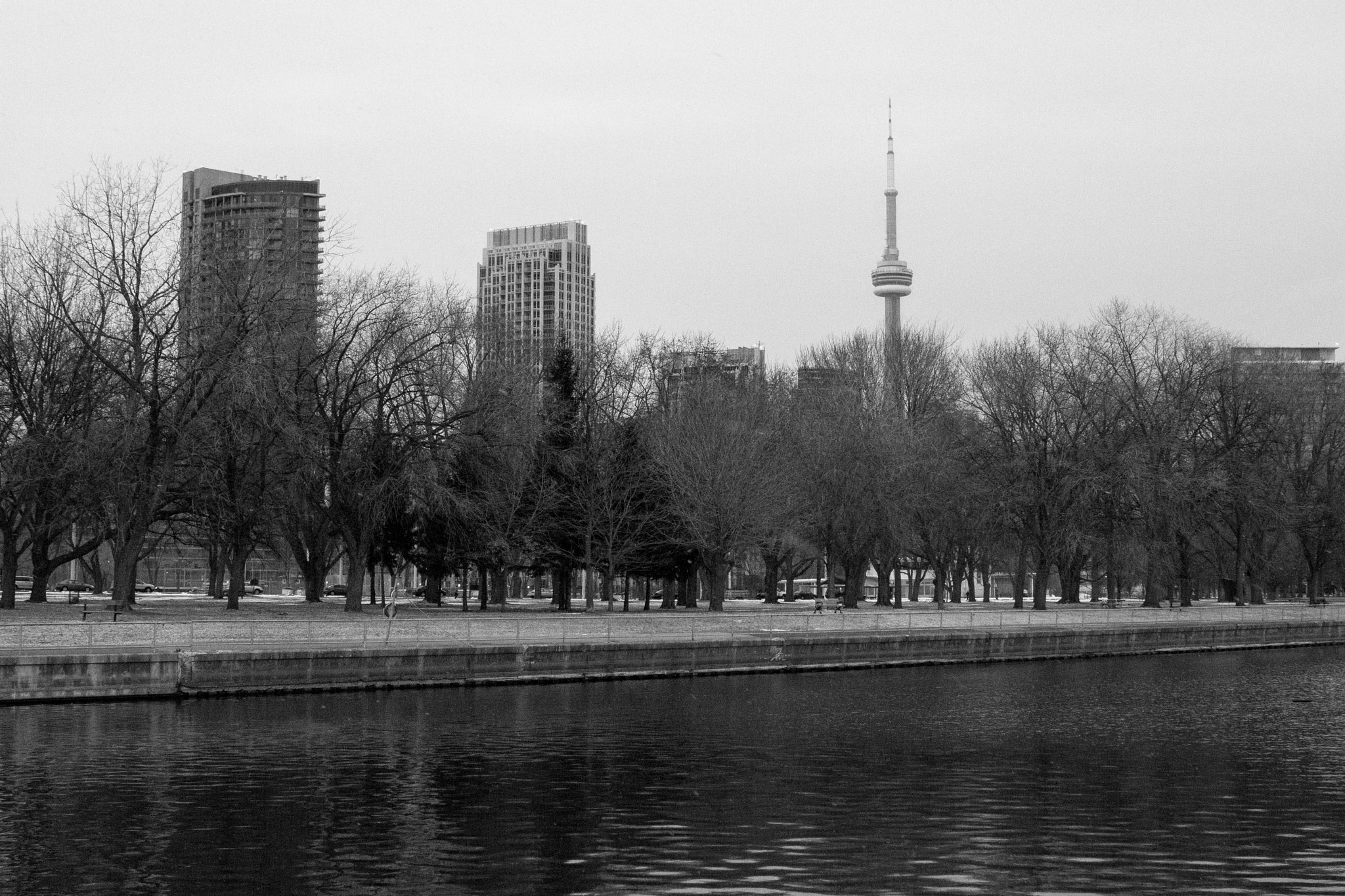 Photograph CN Tower by Ash Furrow on 500px