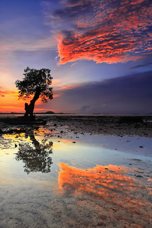 Photograph .:: Burning Reflection ::. by Danis Suma Wijaya on 500px