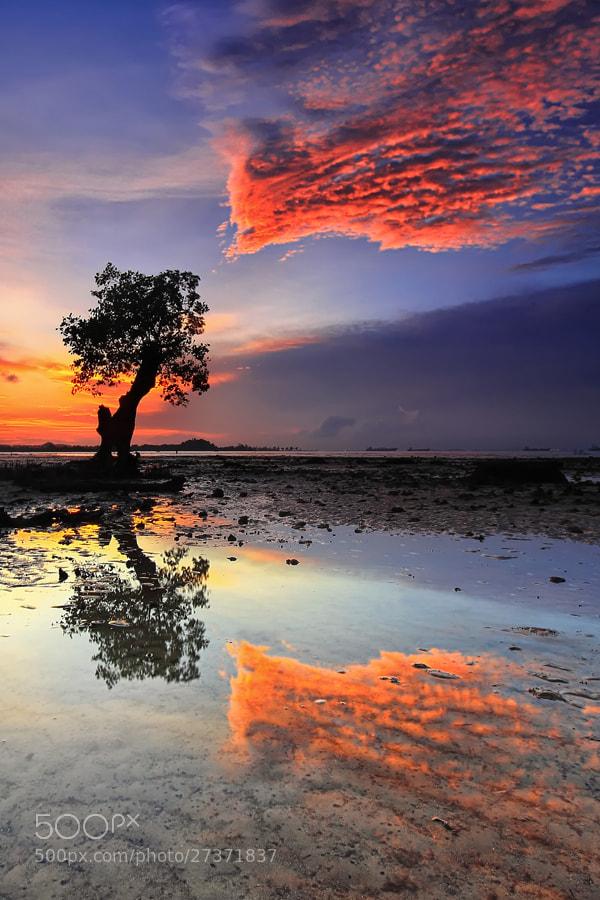Photograph .:: Burning Reflection ::. by Danis Suma Wijaya on 500px