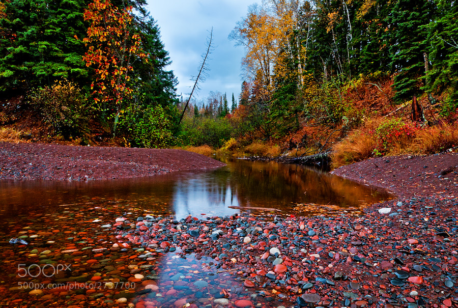 A final burst of color along one of the many streams that wind their way to Lake Superior.  This area will soon be transformed into slate-grey monochrome and remain that way for about six months. Taken near Grand Marais, Minnesota.