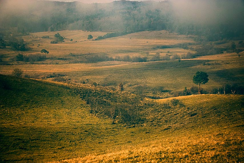Photograph Untitled by belu gheorghe on 500px
