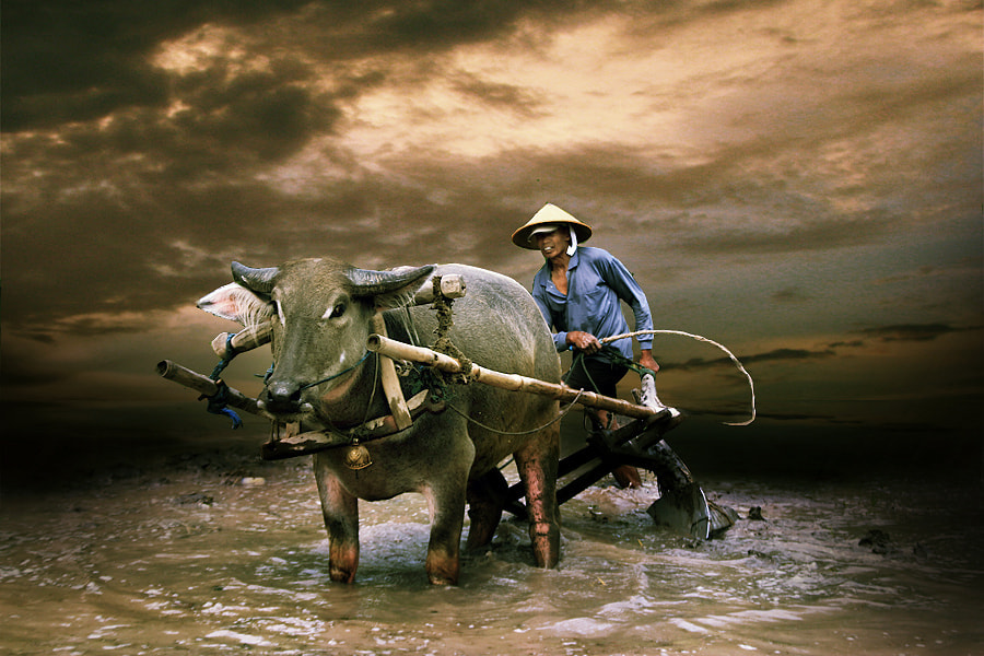Photograph Tradisional Farmers by 3 Joko on 500px