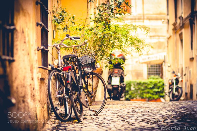Photograph Love bikes by David Juan on 500px