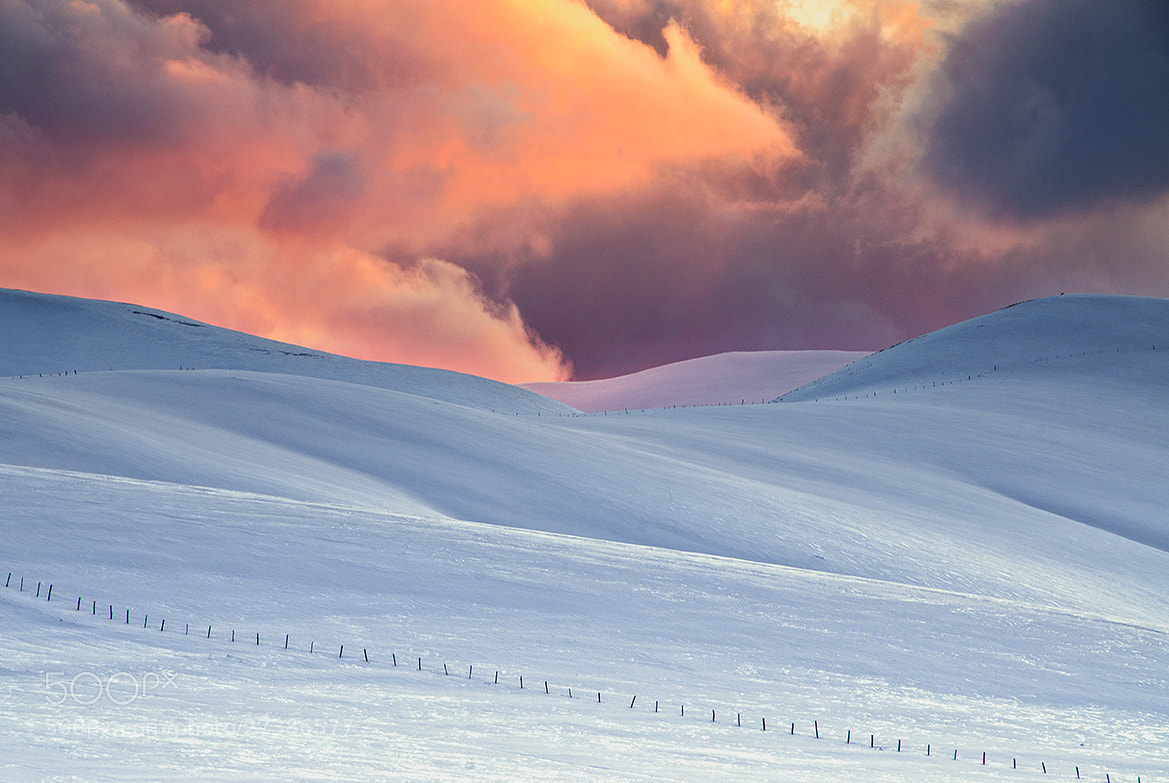 Photograph In Flames by Stefano  Vita on 500px