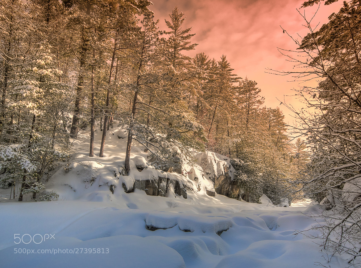 Photograph Fresh Winter Morn by Stevan Tontich on 500px