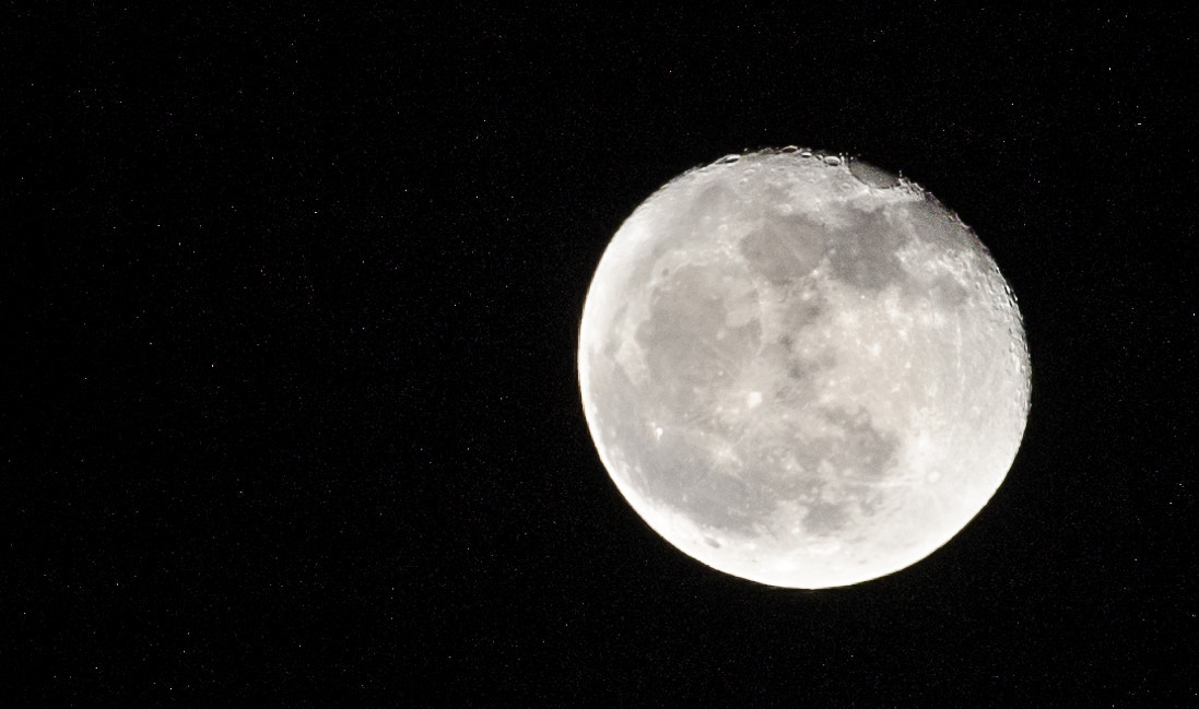 Photograph Royal moon by Ene Catalin on 500px