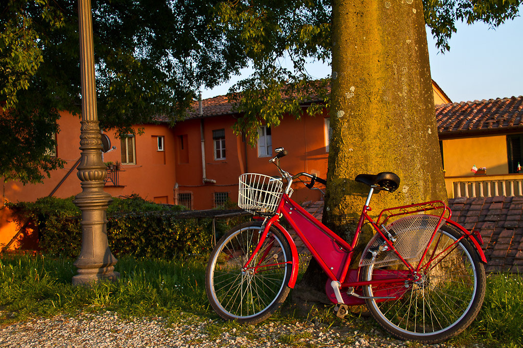 Photograph Tuscan bike by Jose L. Rivas on 500px
