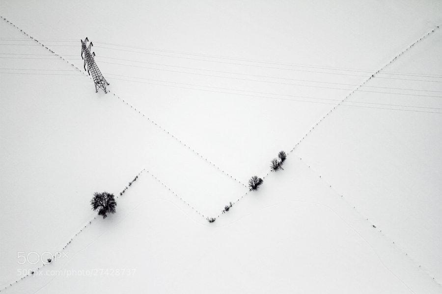 Photograph Neighbors by Laurynas Komža on 500px