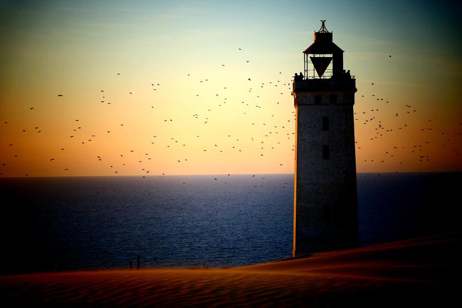 Guarding the sea *, автор — Michael Gimenez Rodriguez de vera на 500px.com