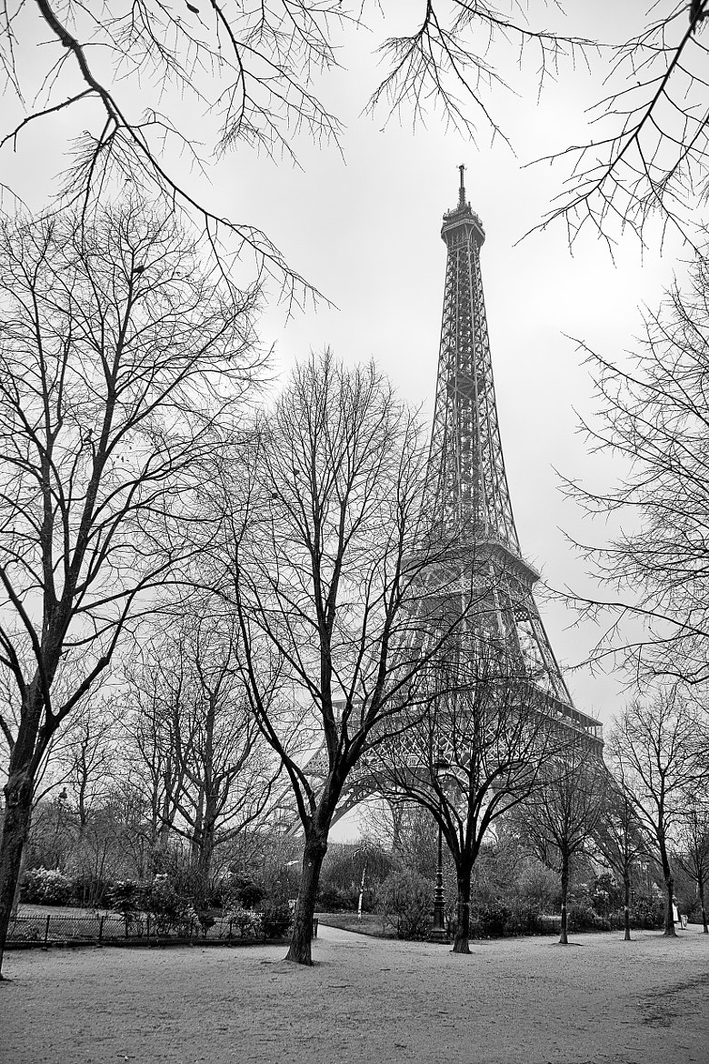 Photograph Eiffel Tower B&W by Alessandro Crea on 500px