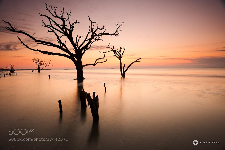 Photograph Boneyard Beach by Bernard Chen on 500px