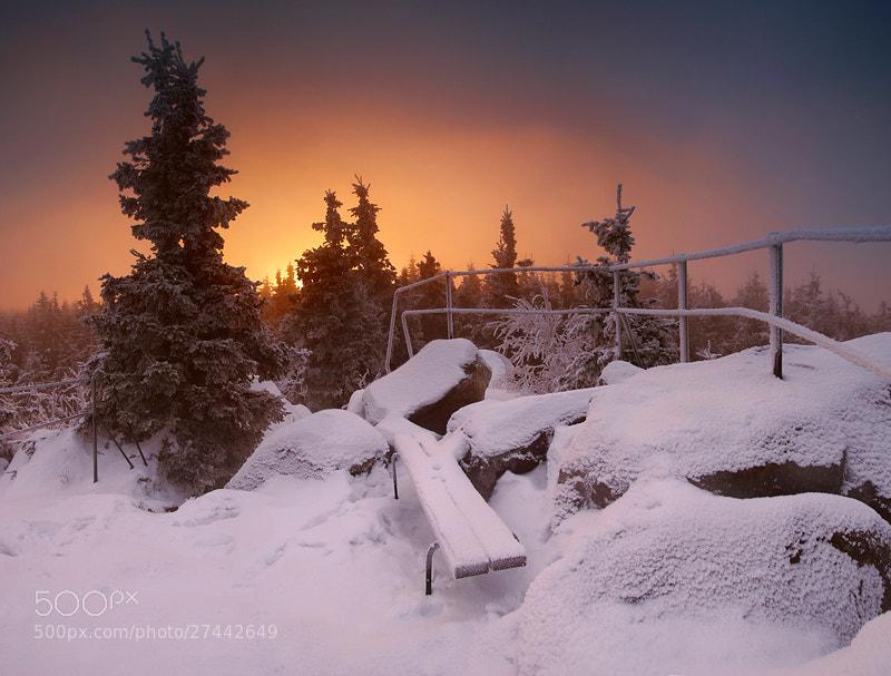 Photograph Bench by Karol Nienartowicz on 500px