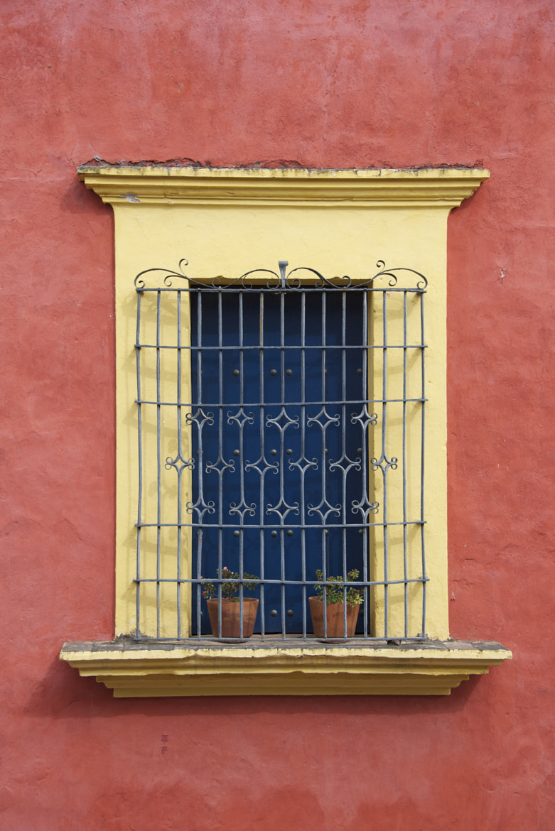 Photograph Blue Window by Alejandro Muhech I. on 500px