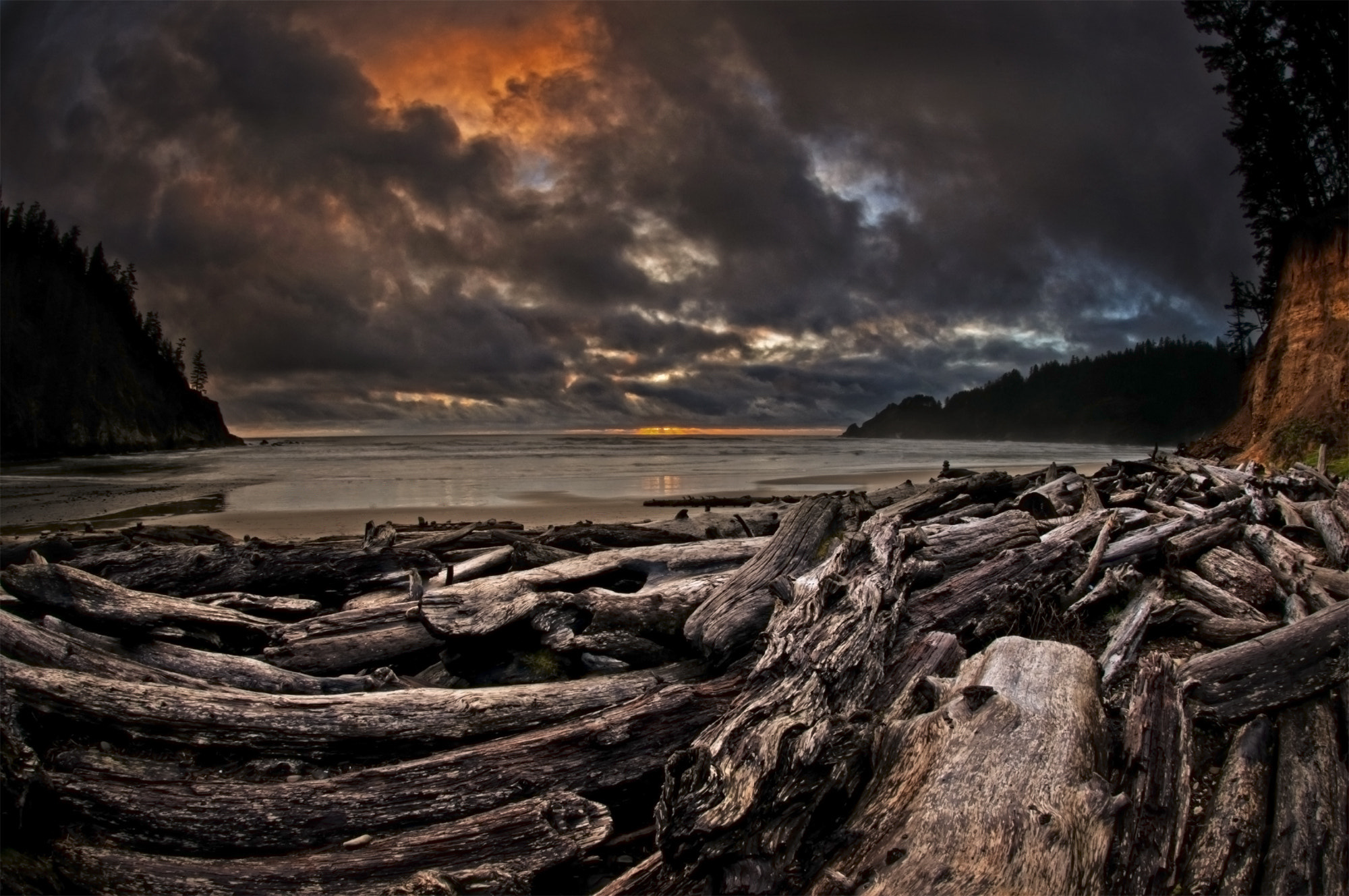 Photograph Driftwood Graveyard by Brian Bonham on 500px