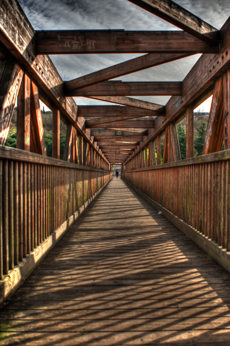 Photograph The bridge by Nelson Cristo on 500px