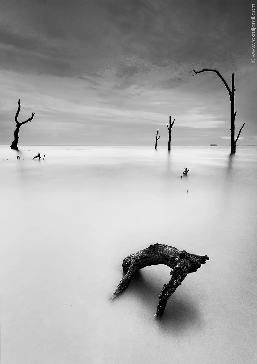 Photograph Isolated II by Fakrul Jamil on 500px