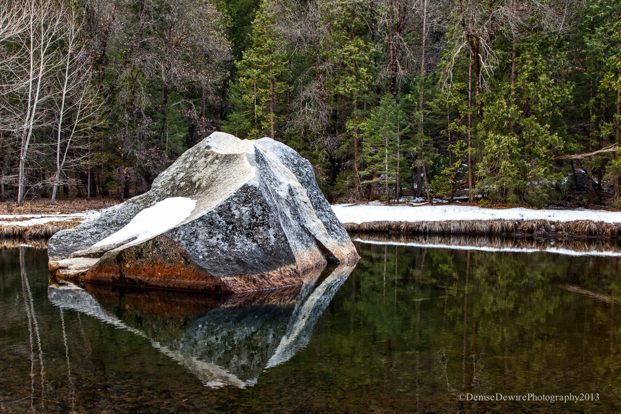 Photograph The ROCK by Denise Dewire on 500px