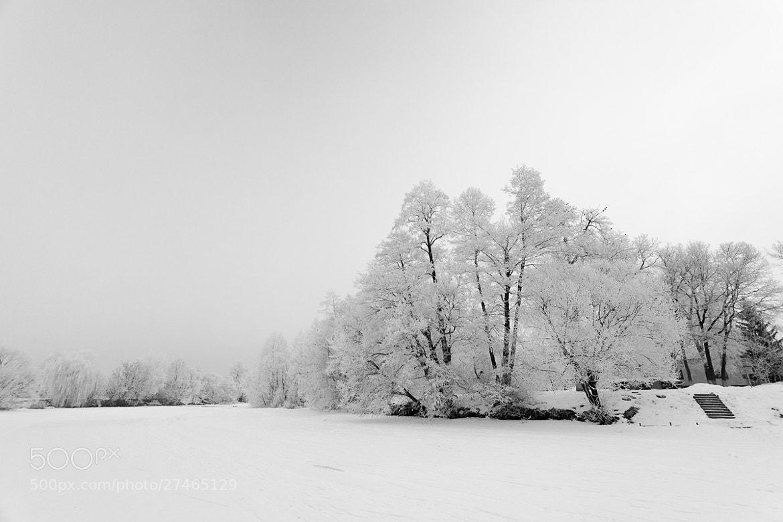 Photograph Tsna river. Winter.  by Denis Belyaev on 500px