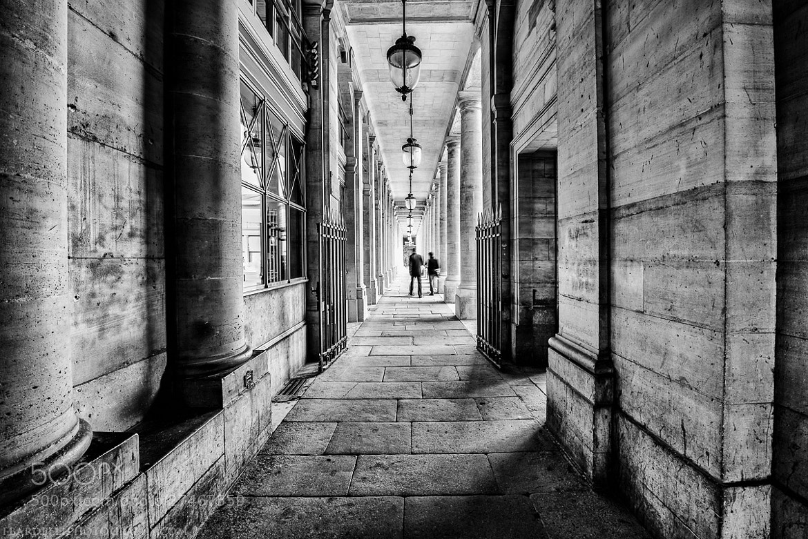 Photograph Palais Royal, Paris. by Fabien Bardelli on 500px